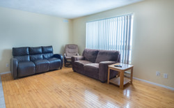 Small Portion Living Room