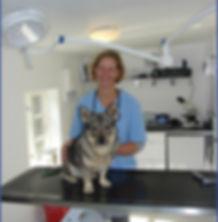 Dyrlæge og dyreklinik i Roskilde. Vaccination, tandrens, kastration, sterilisation, foder, røntgen, operation, hund, kat, kanin, Himmelev, Ågerup, Gundsø dyreklinik, Sengeløse, Fløng