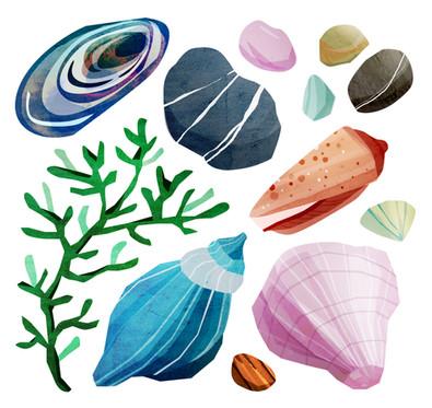 Beach treasure illustration
