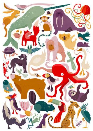 Amazing animals print