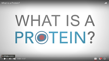 whatisaprotein.png