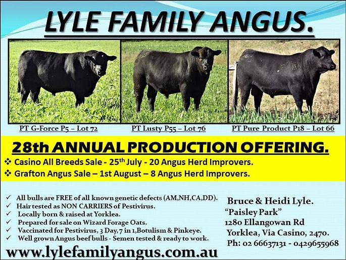 3 Bull advert 2020.jpg