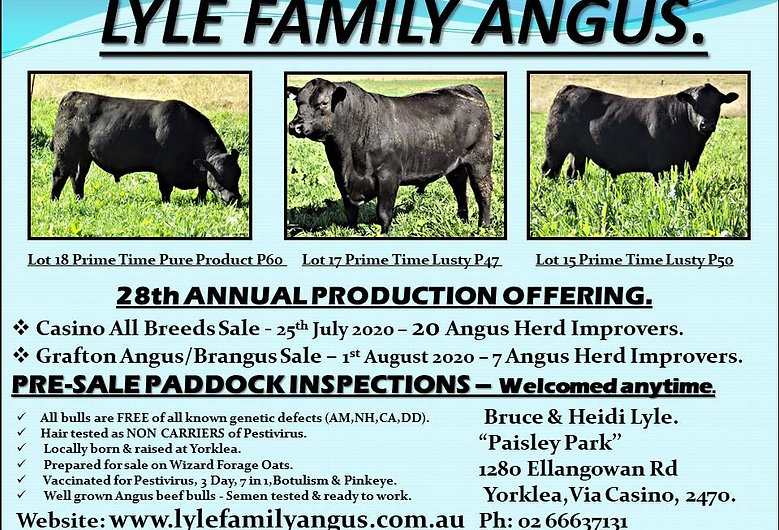 LYLE FAMILY ANGUS 2020 Advert only.jpg