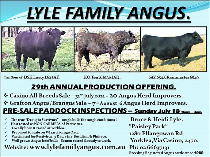 LYLE FAMILY ANGUS v2.jpg