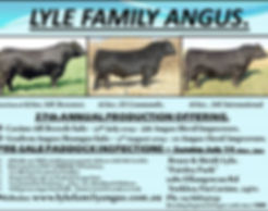 LYLE FAMILY ANGUS 2019 Advert only.jpg