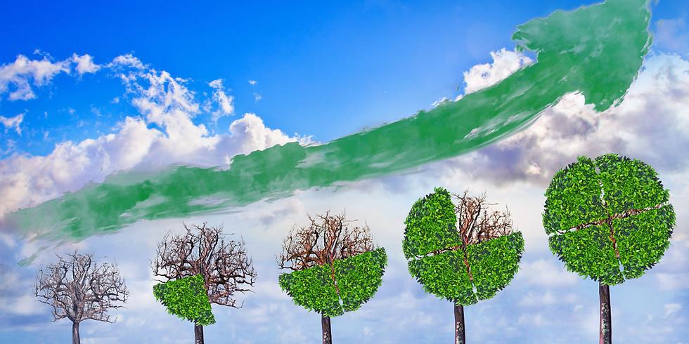 Medlemsmøte: Grønne investeringer, hvor kommer de og hvor smarte er de?