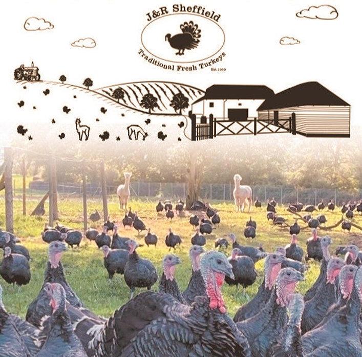 New Turkey Poster JPG_edited_edited_edited.jpg