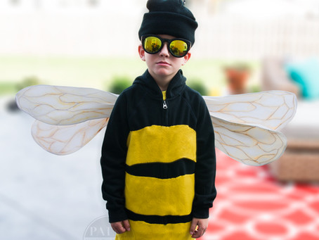 Top 5 Best Honeybee Halloween Costumes!