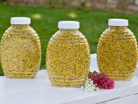 How To Choose The Best Bee Pollen For You