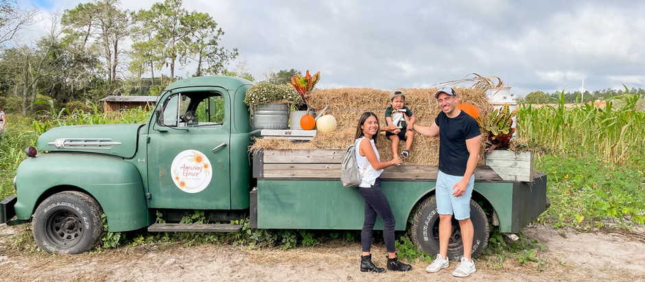 Our First Family Pumpkin Patch Day