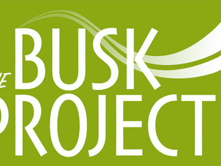 Introducing the Busk Project