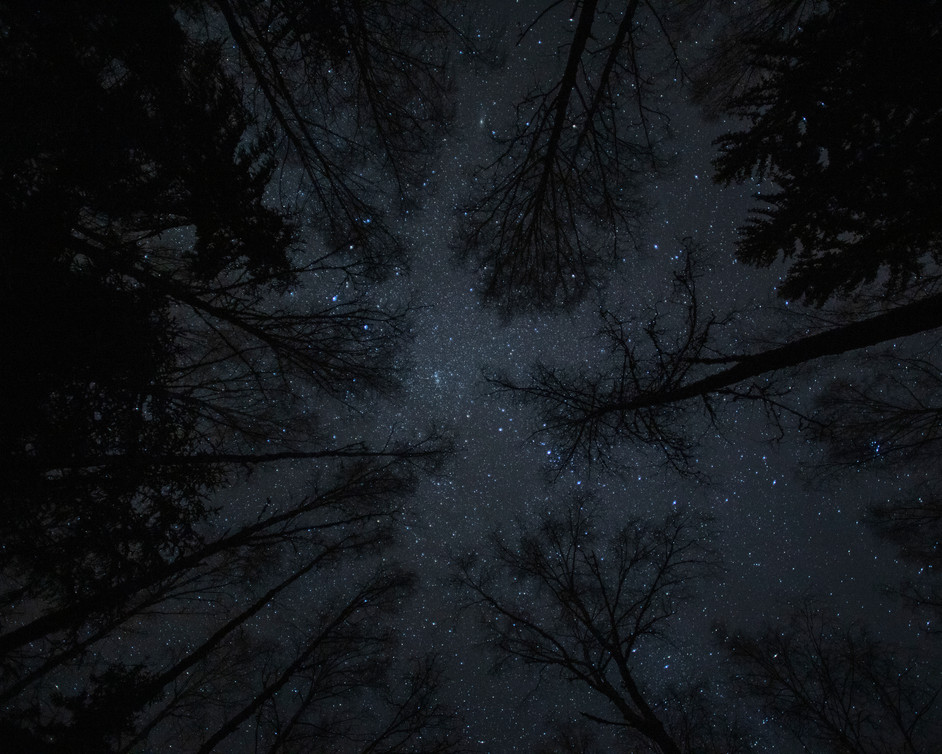 Smart trees and stars