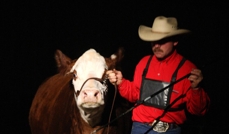 K-Cow Reno 21R