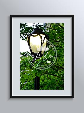 Light the way Print
