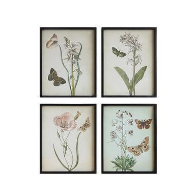 Flowers & Butterflies Framed Wall Decor (Set of 4 Designs)