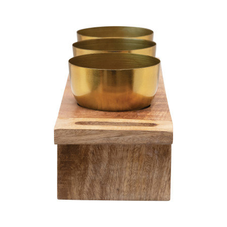 Metal Planters with Wood Stand, Natural & Gold Finish, Set of 4