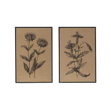 """23.5""""H Woven Raffia Floral Wall Decor with Wood Frame (Set of 2 Styles)"""