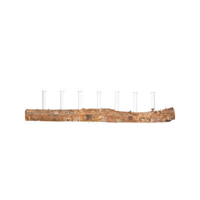 7 Glass Tube Vases on Birch Wood Log Base (Set of 8 Pieces/Each one will vary)