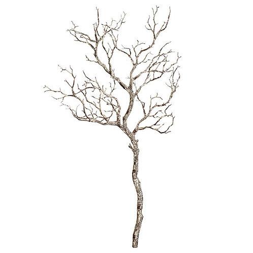 Large Winter Branch