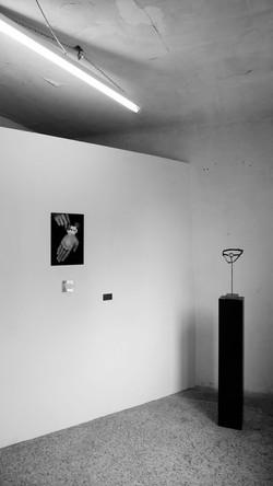 Rodolphe Cintorino, Emmanuel Lacoste