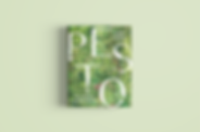 pesto-mockup_light.PNG