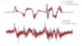 実車シム比較グラフ2.png