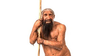 About Neanderthal man white background C