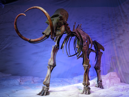 ICE AGE | Ice Age Giants: