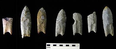Megafaunal Extinctions Clovis spear poin