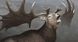 Megafaunal Extinctions The Verdict Giant