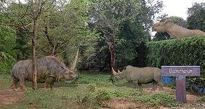 Fantastic Beasts Elasmotherium sibericum