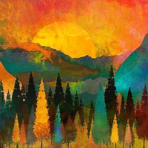 trees-4047820_1920_edited.jpg