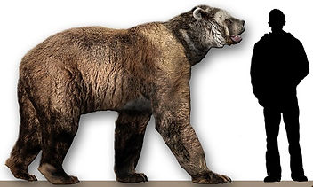 Megafaunal Extinctions Arctodus simus CC