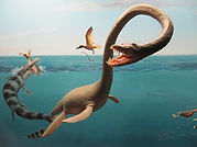 About Marine Reptiles CC WI tnail smalle