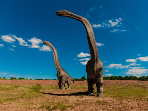 MAMMAL NAMES   'Largest Animals Ever'? Part I: