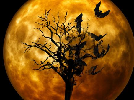 MAMMAL ORIGINS | Halloween Special:
