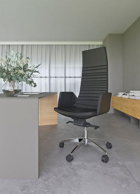 executive chairs NORTH CAPE interiors executive desk MOVE.jpeg