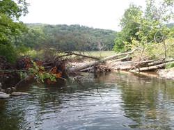 Savage River - Before
