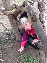 lilia climbing through.png.jpg