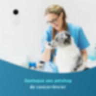 Aba Web Videomonitoramento em Nuvem / Consultoria em Telecomunicações / Pet Shop.png