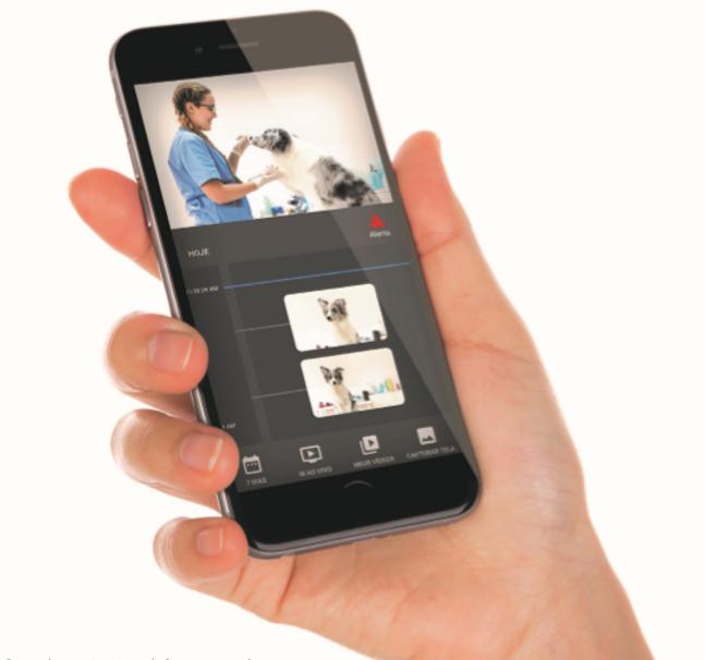 Aba Web Videomonitoramento em Nuvem / Consultoria em Telecomunicações / smart pet.PNG