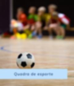 Aba Web Videomonitoramento em Nuvem / Consultoria em Telecomunicações / quadras Escolas Seguras.png