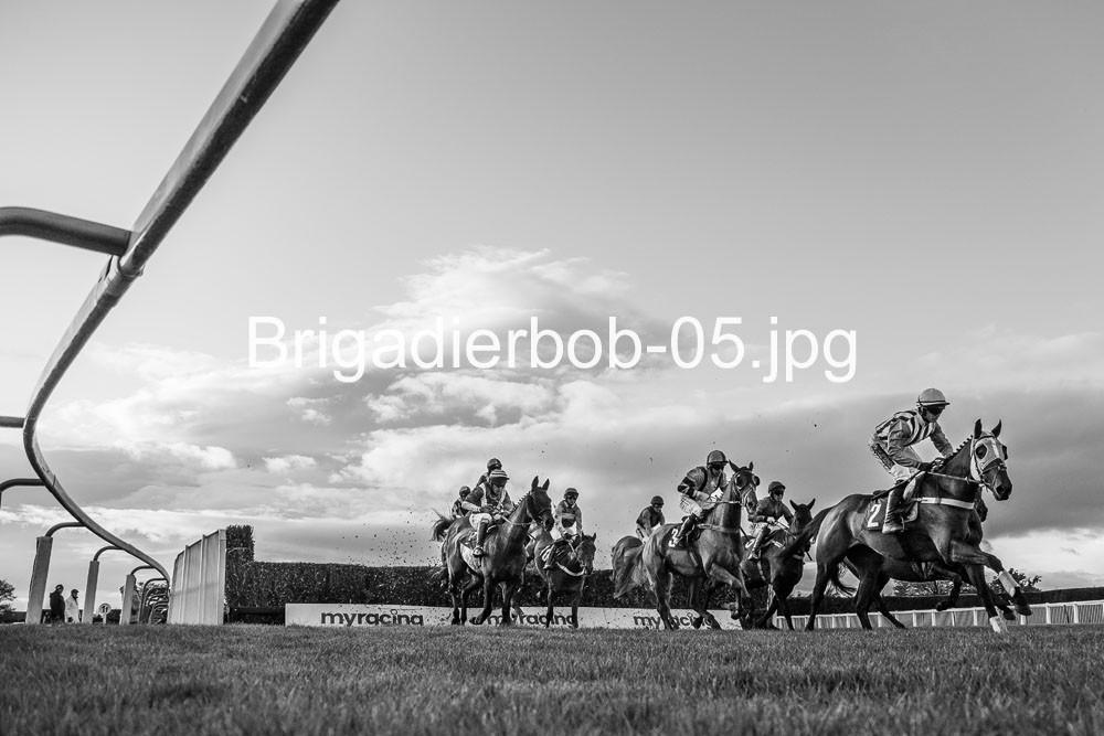 Brigadierbob-05