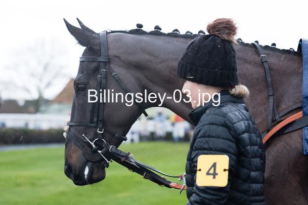 Billingsley-03