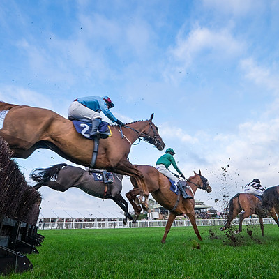 Hereford Races Nov 2016
