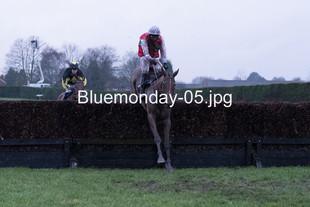 Bluemonday-05
