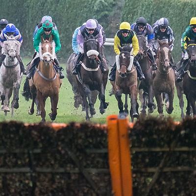 Hereford Races - Nov 27 2019
