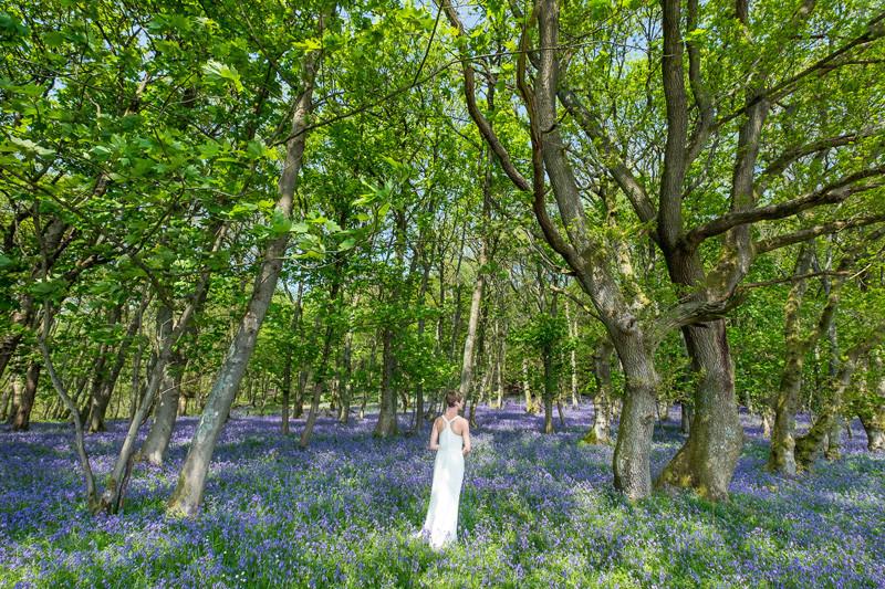Bride in bluebells