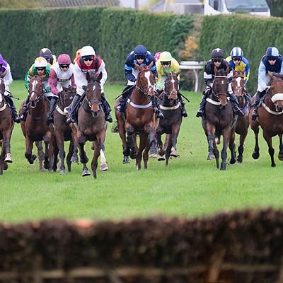 Hereford Races - Nov 4 2019