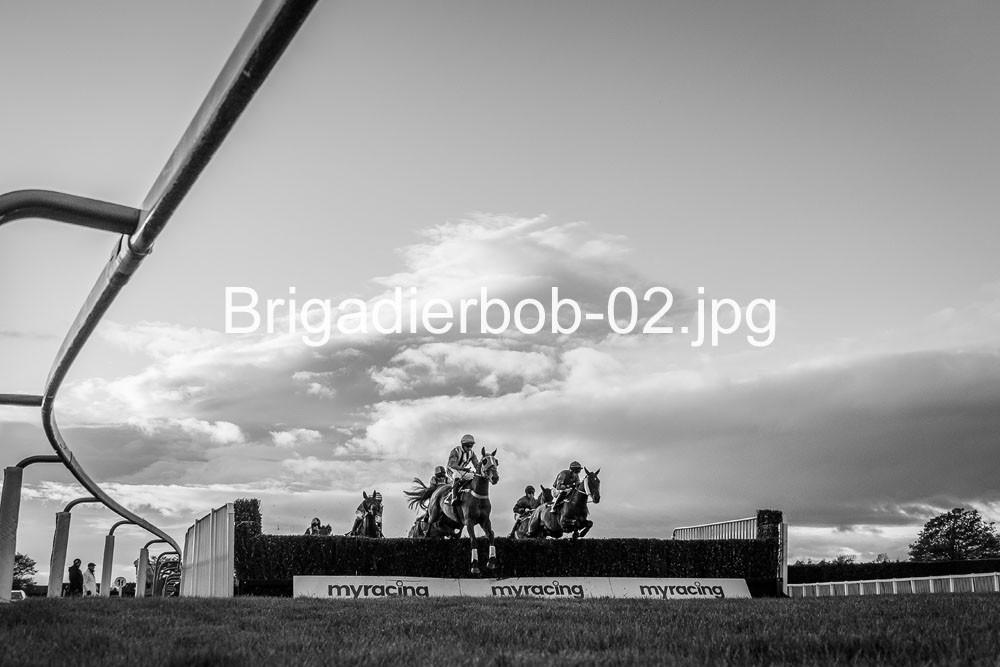 Brigadierbob-02